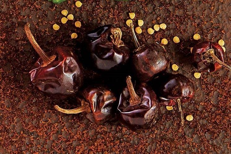 il peperoncino Habanero varietà