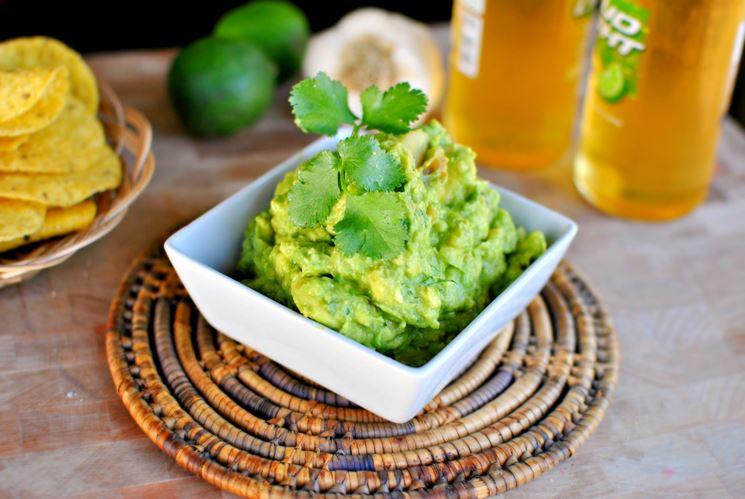 Avocado pianta frutteto le propriet della pianta di for Pianta di avocado