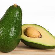 piantare seme avocado