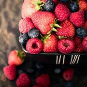 coltivare frutti di bosco