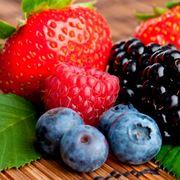 piante frutti di bosco