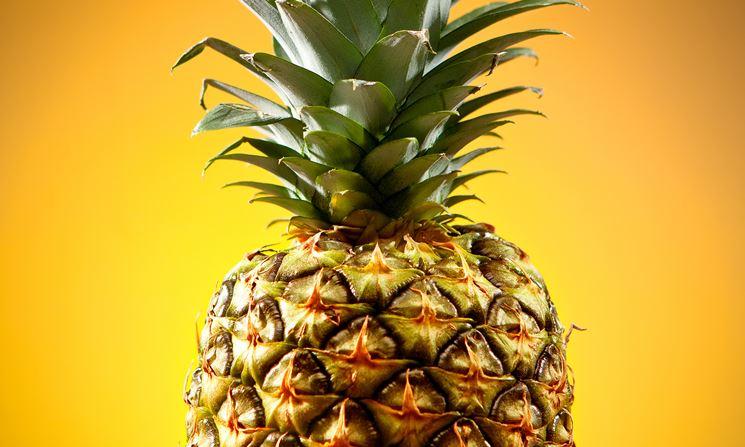 La parte del gambo d'ananas