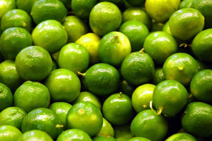 Lime raccolto