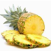 piantare ananas