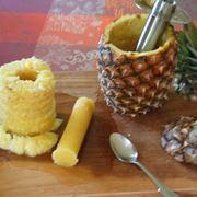 albero ananas