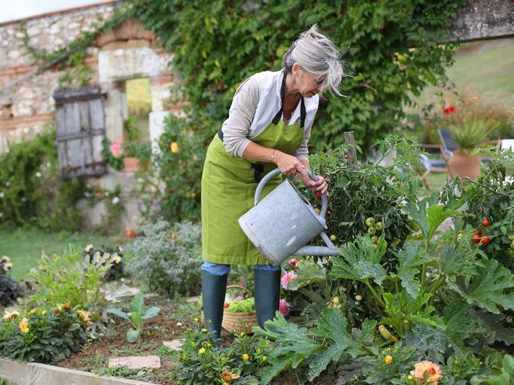 irrigazione orto