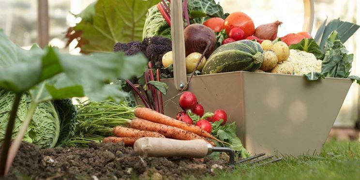 verdure settembre