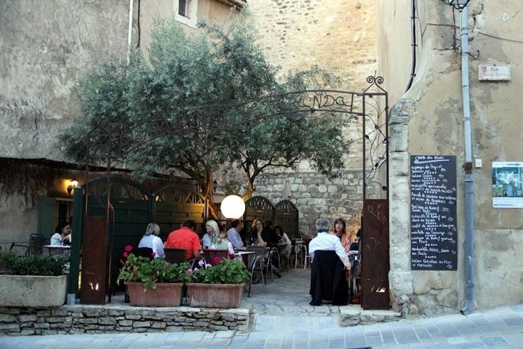 pianta d'olivo a Ménerbes