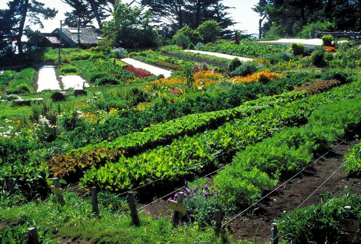agricoltura biologica normativa