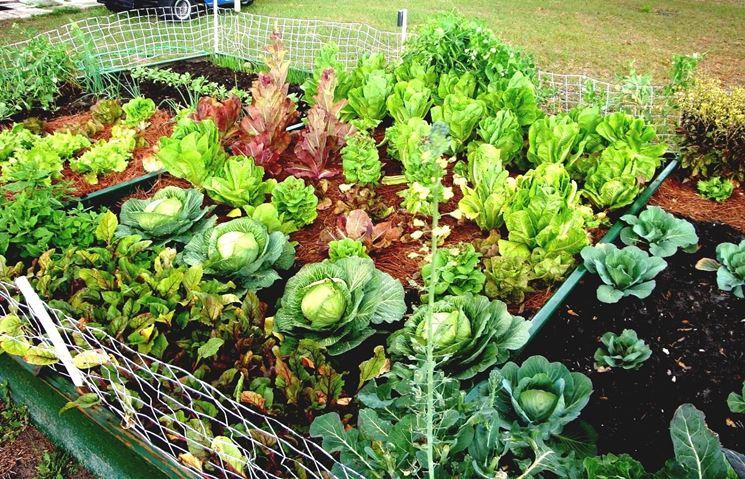 coltivare bio