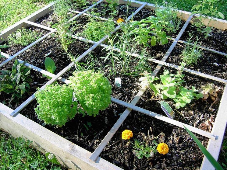 Coltivazione orto biologico orto biologico coltivare for Orto fai da te