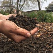 fertilizzanti biologici per orto