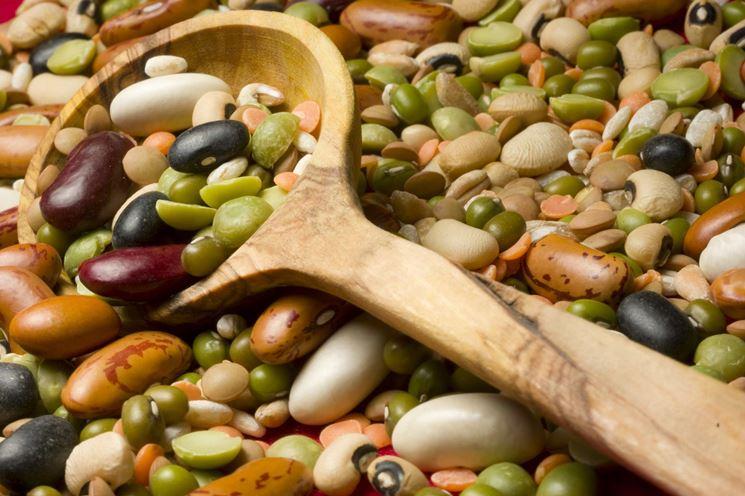 diverse tipologie di legumi