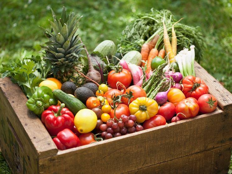 verdura bio