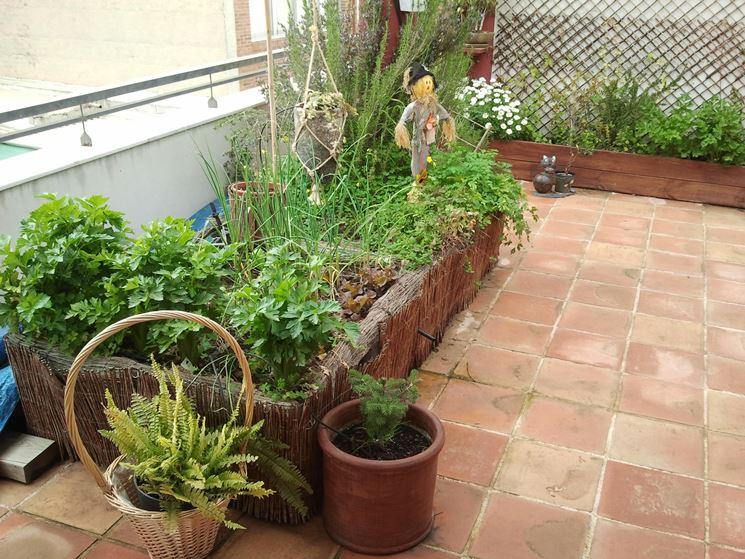 Orto sul balcone cosa piantare - Orto in balcone - Cosa piantare ...