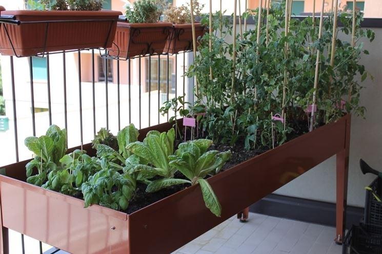 Orto sul balcone - Orto in balcone - Come coltivare l\'orto sul balcone