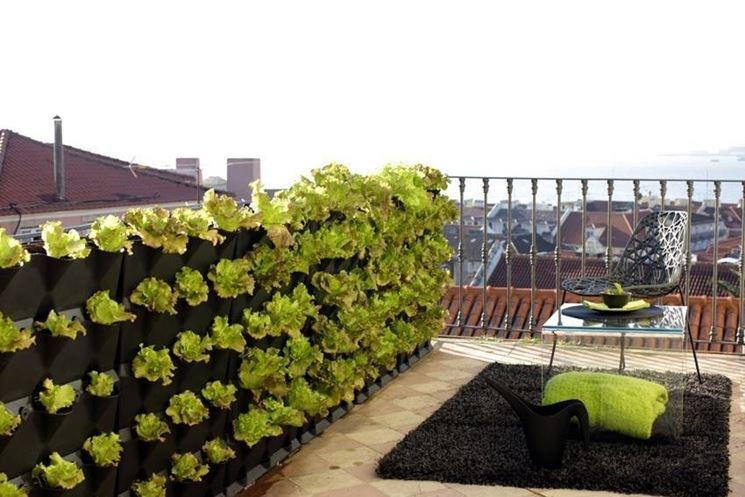 Orto verticale sul balcone - Orto in balcone - Coltivare orto verticale sul b...