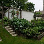 Esempio di orto in giardino
