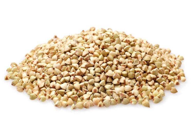 Fiori di grano saraceno