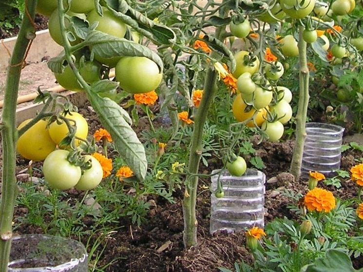 Sistema irrigazione artigianale