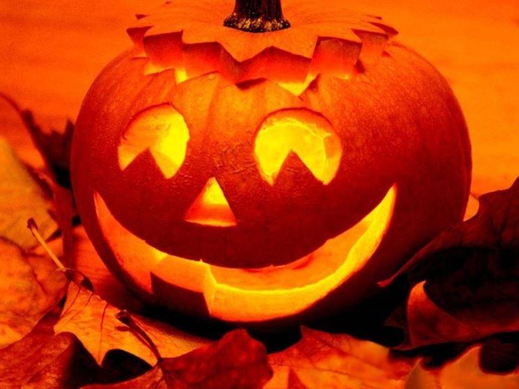 Zucca Di Halloween Quando Seminare.La Zucca Orto Coltivazione Zucca