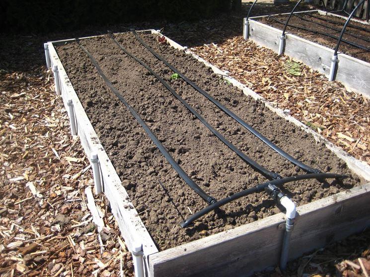 irrigazione piante