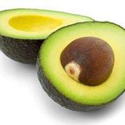 come piantare avocado