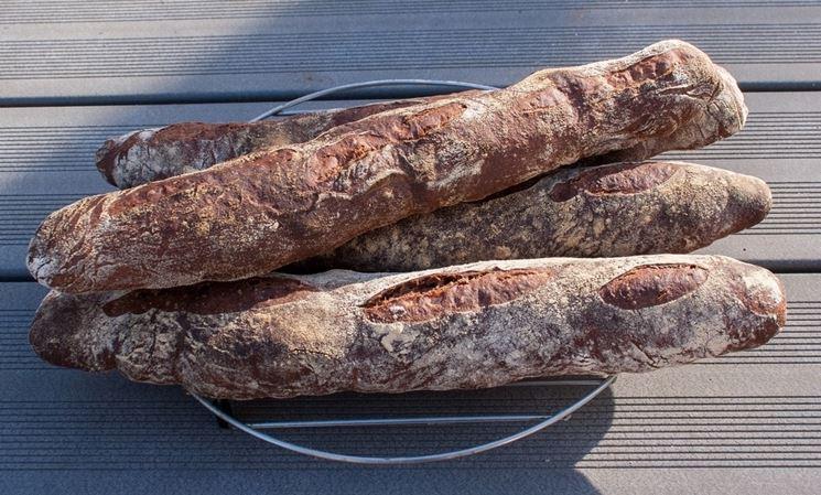 Pane preparato con la farina di semi d'uva