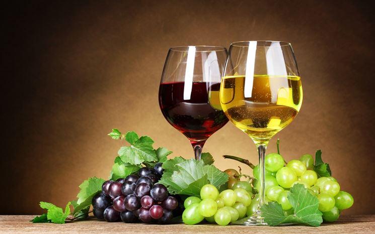 vino rosso - vino bianco