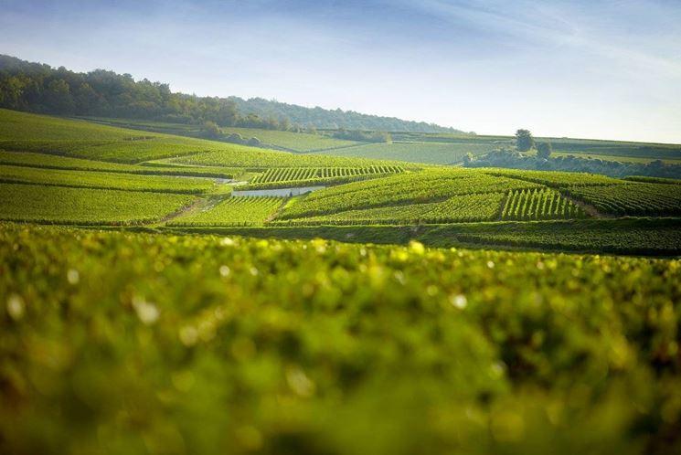 Cartina della regione Champagne
