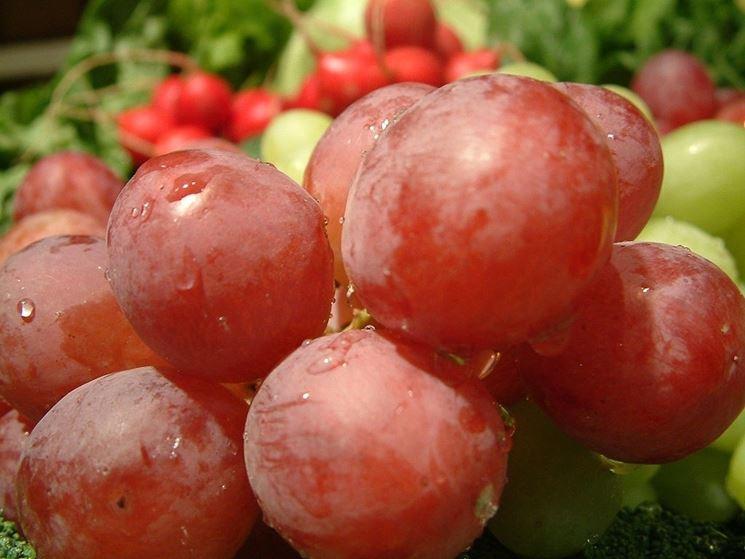 Acini di uva rossa