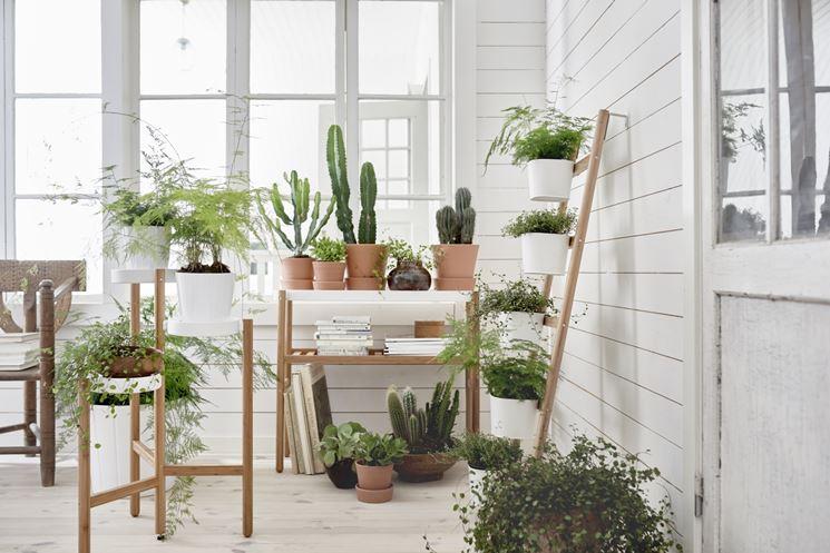 Conosciuto Arredare con le piante - Composizione Piante - Arredare l'ambiente  RK46