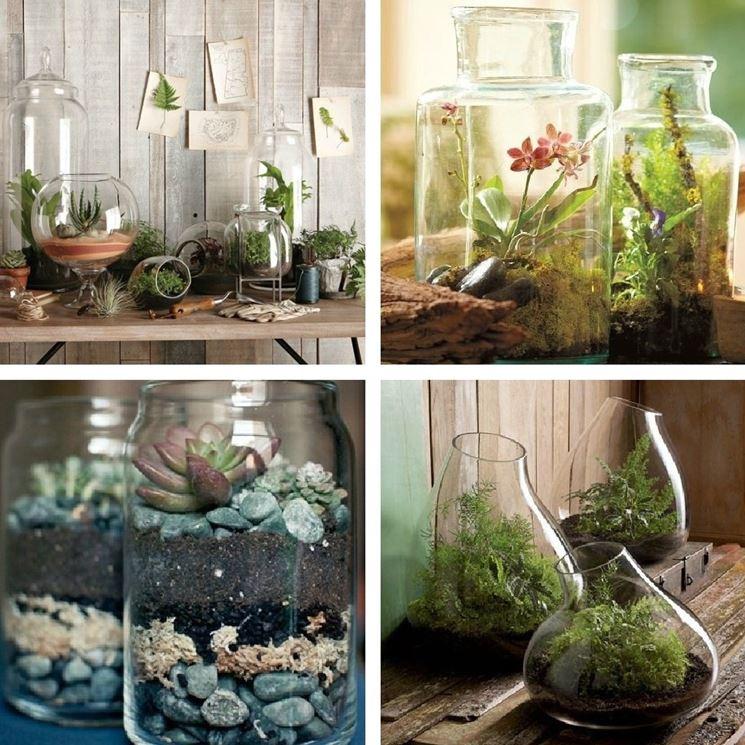 Arredare con le piante - Composizione Piante - Arredare l'ambiente con le piante