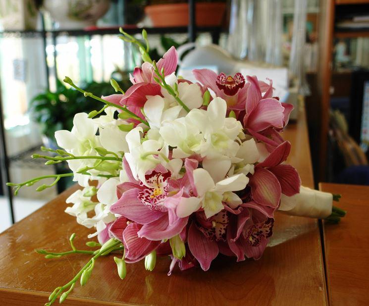 composizione orchidee