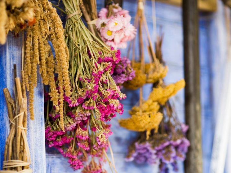 Composizione fiori secchi<p />