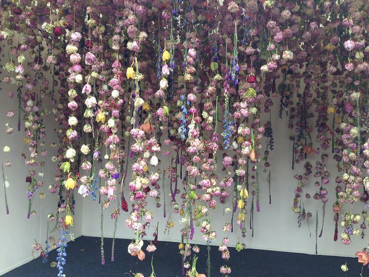 essicazione fiori