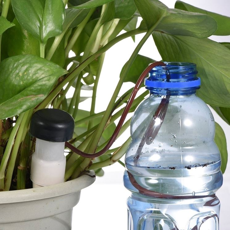 irrigatore da bottiglia