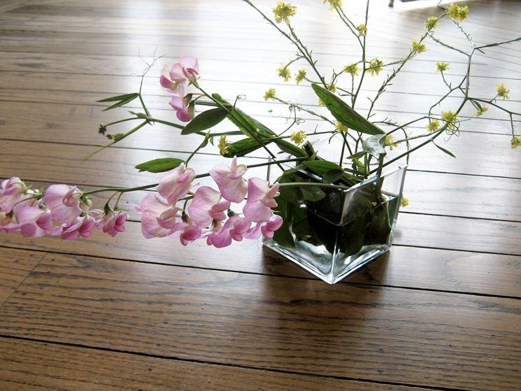 Potare orchidea orchidee come potare un 39 orchidea - Come curare un orchidea in casa ...