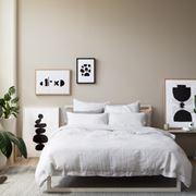 Piante per camera da letto