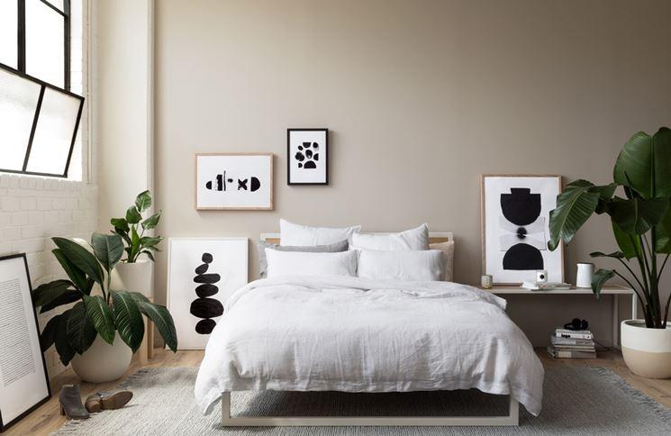 piante da camera da letto piante da interno quali