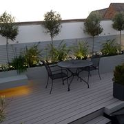 Alberi da balcone piante da terrazzo alberi per il - Piante sempreverdi per terrazzi ...