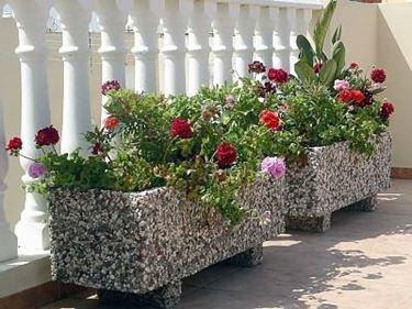 Speciale moda donna primavera estate piante balcone for Piante per terrazzo