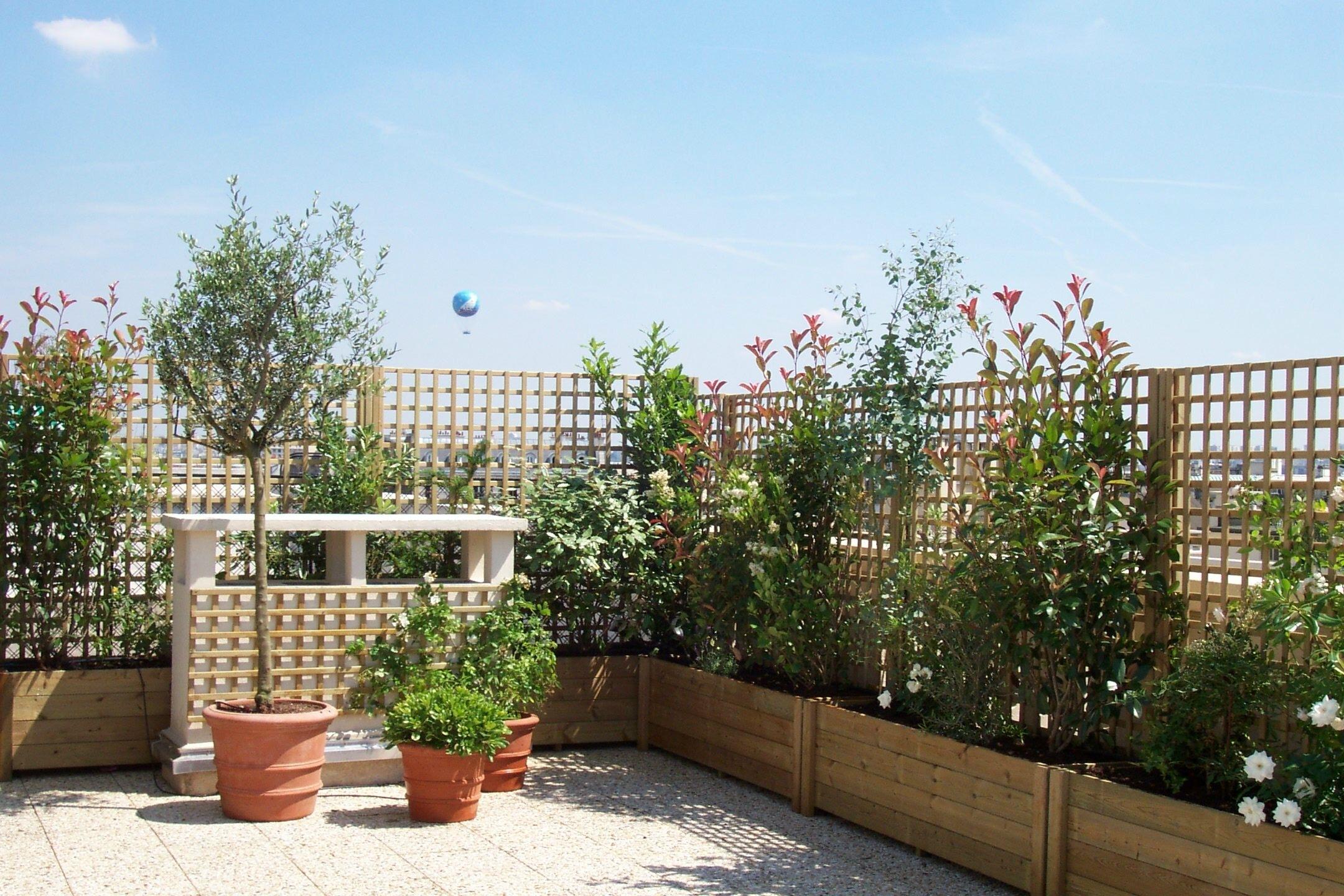 Piante da vaso per esterno casa immobiliare accessori for Piante da vaso per esterno
