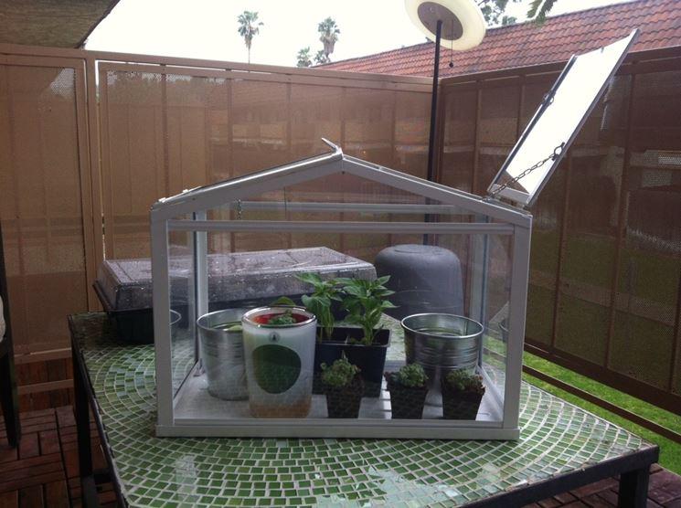 Serra da balcone piante da terrazzo serra per balcone for Mini serra da balcone
