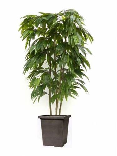 Alberi artificiali piante finte - Alberi da interno ...