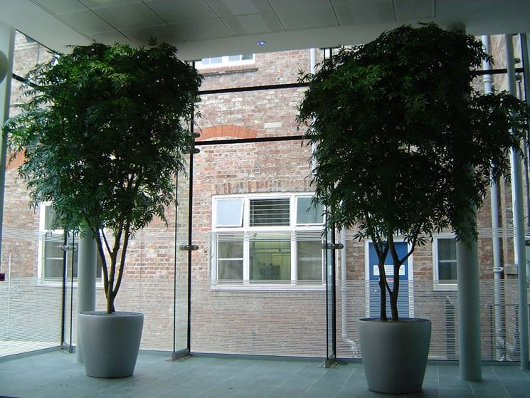 alberi artificiali piante finte alberi finti On alberi finti da arredamento