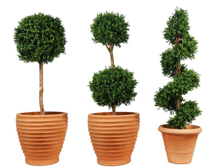 Alberi artificiali piante finte alberi finti for Fiori ornamentali da esterno