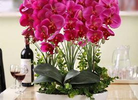 Piante e fiori artificiali