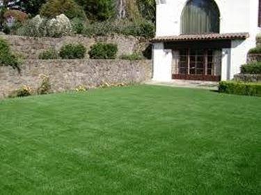 Piante finte da esterno piante finte - Erba sintetica da giardino ...
