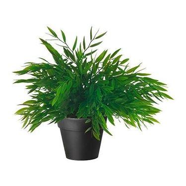 Piante finte da interno piante finte for Piante rampicanti finte